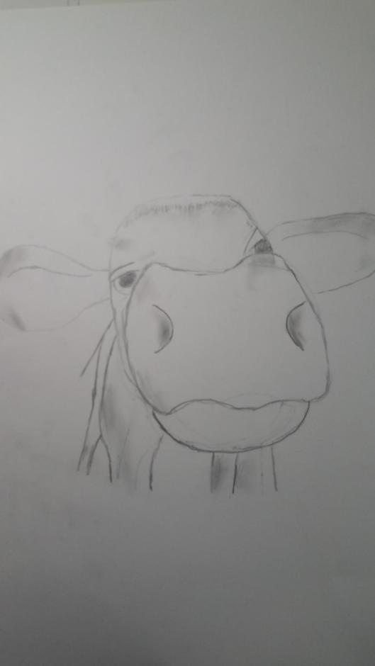 Zeichnung Leander